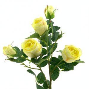 rama rosal amarillo