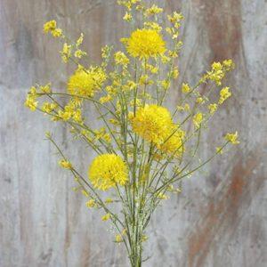 ramillete-allium-amarillo